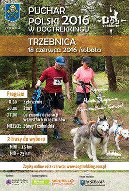trzebnica_poster