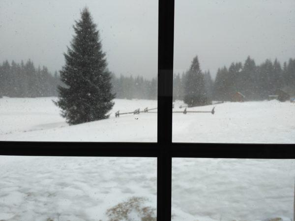 Śnieżna zawierucha zza schroniskowego okna.