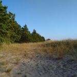 Za tą wydmą chowaliśmy się przed wiatrem