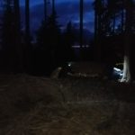 Świecące oczy wilka w obozie ;)
